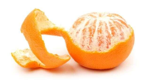 Laranja: Tipos e Variedades, a fruta é rica em minerais, potássio, cálcio e fósforo e vitaminas