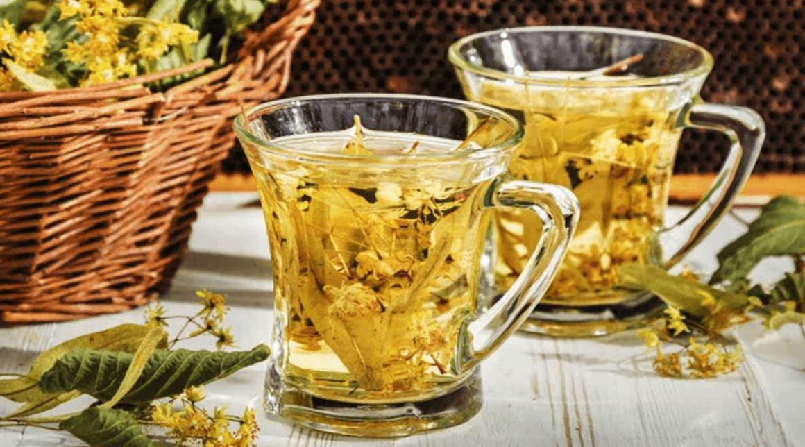Os Benefício Do Chá De Carqueja