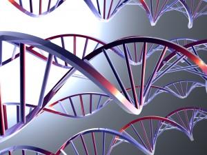 Utilização correta de testes genéticos: Inscrições abertas e vagas limitadas