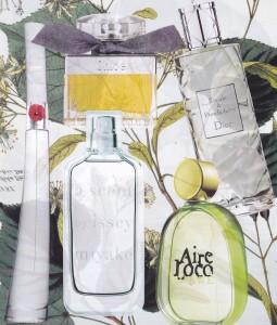 Cheiros e Aromas dos Melhores Perfumes da Nova Estação