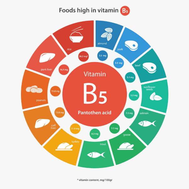 Para que serve a Vitamina B5 (ácido pantotênico): Benefícios, alimentos, sintomas de deficiência e dosagem