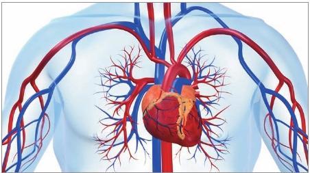 Medicamento Procoralan para pacientes com angina de peito