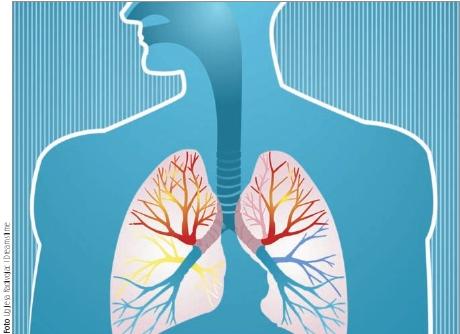 foto pulmão