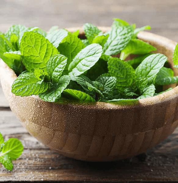 25 Benefícios Surpreendentes Da Hortelã Pimenta Para A Saúde