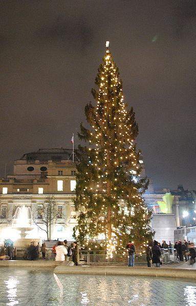 Árvore de Natal: Origem, Lendas e História da Árvore de Natal