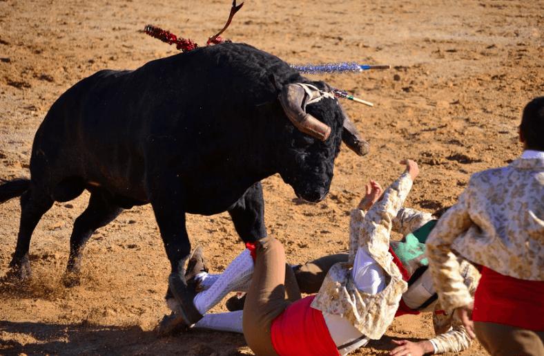 Festas do Barrete Verde e das Salinas