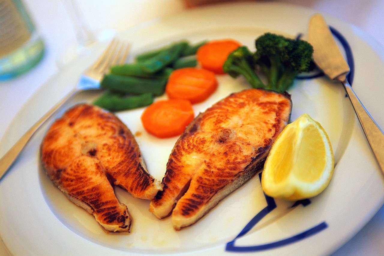 beneficios do salmão - foto