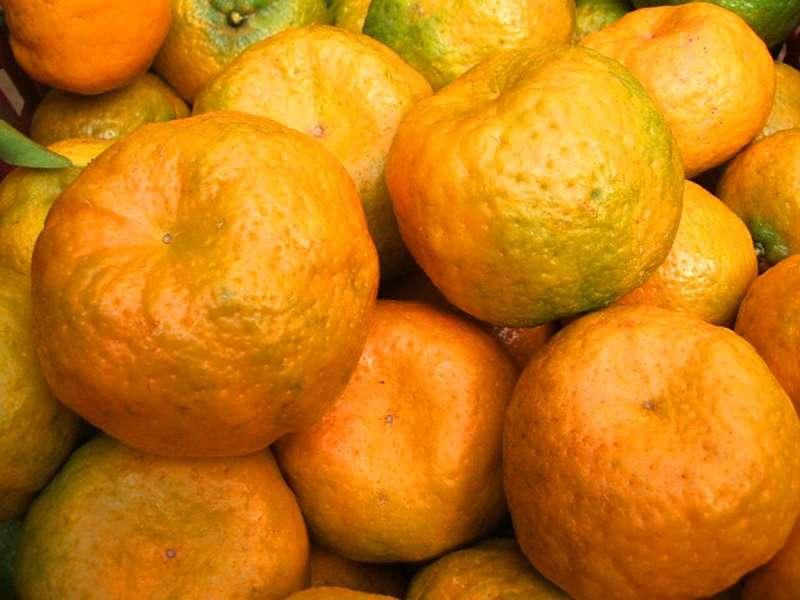 Suco de tangerina para hidratar a pele