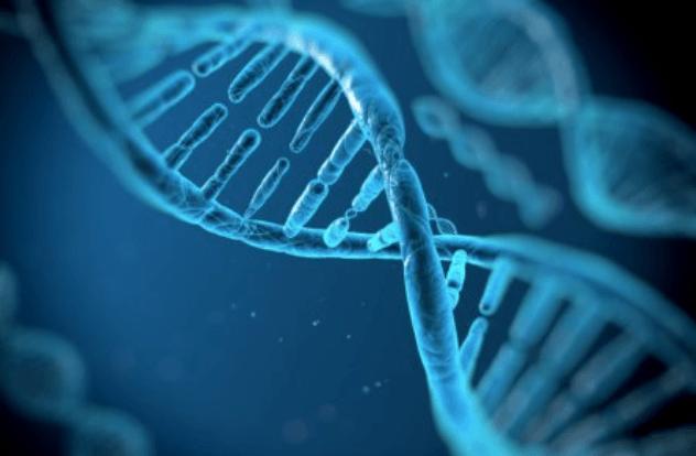 Mutação No DNA