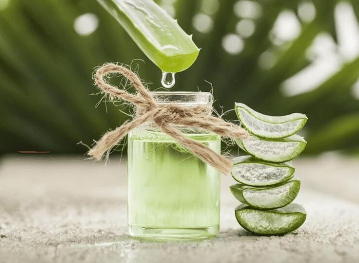 Os 8 Melhores Laxantes Naturais: Sementes, Óleos, Plantas, Frutos Desidratados…