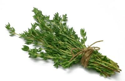 Solução natural para sinusite: chá de tomilho