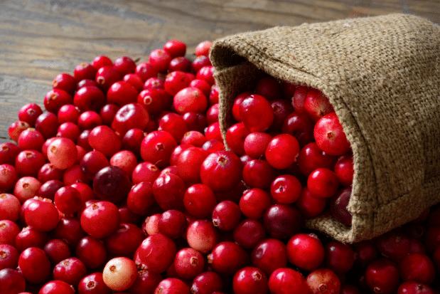 cranberry-arando-vermelho-oxicoco