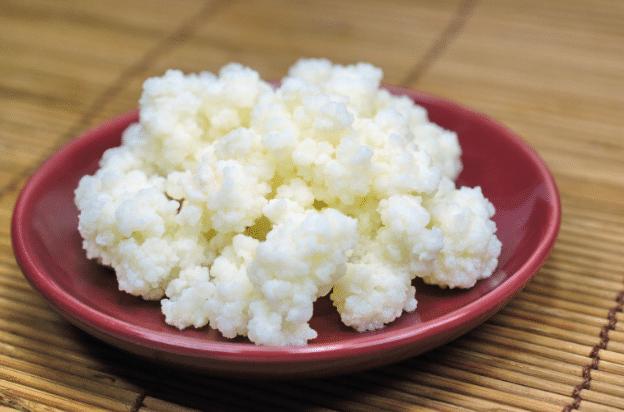 kefir-alimento-probiotico