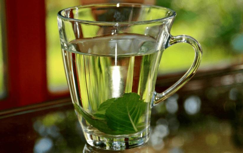 Chá de manjericão e limão para aliviar os sintomas da amigdalite