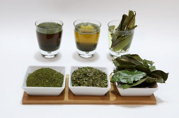 Chá de Graviola para Melhorar a Digestão