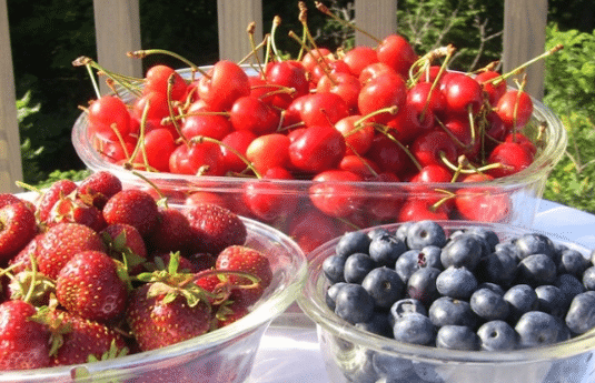 mudancas-na-dieta-e-frutas-para-impetigo