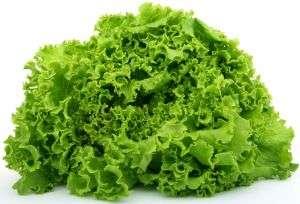 Suco verde para queda de cabelo – Cenoura, alface e pepino