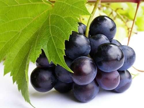 Suco de Uva para Hidratar o Organismo