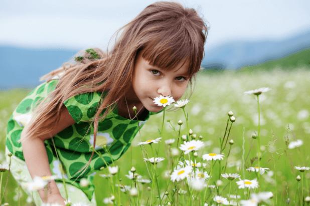 3 Chás e Remédios Caseiros para Alergias Respiratórias