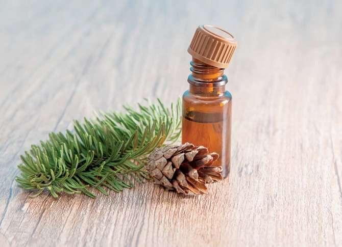 óleo essencial de pinho