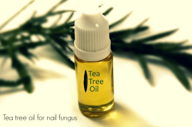 Óleo essencial de árvore-de-chá, malaleuca