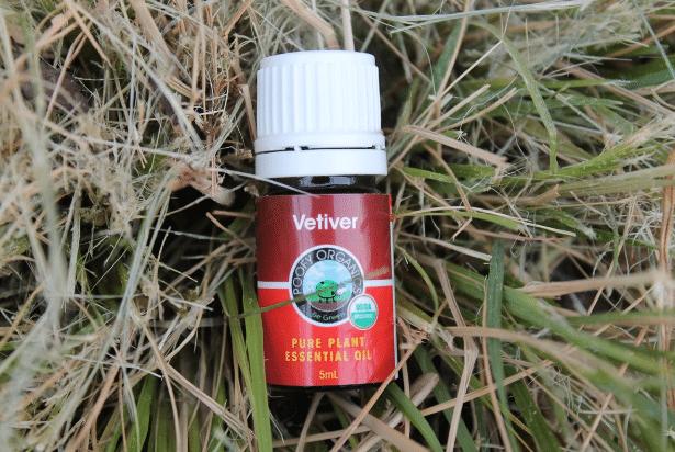 Vetiver Organica Oleo Essencial