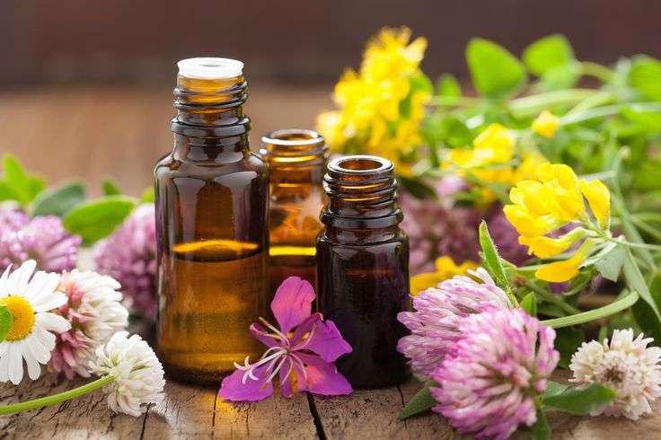 guia de óleos essenciais medicinais e herbais
