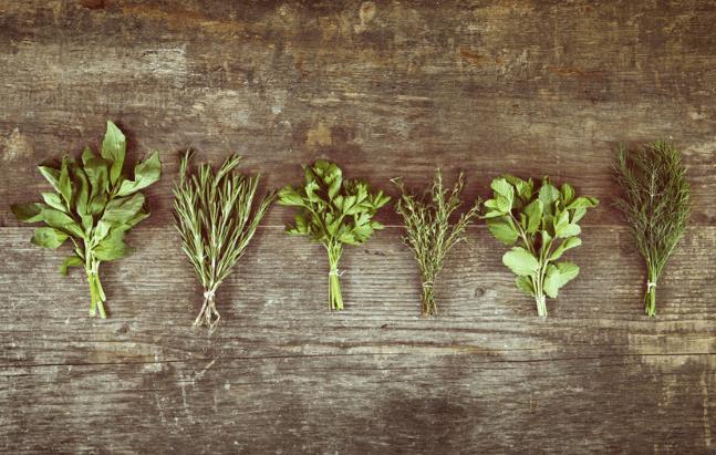 Plantas Anti Inflamatórias
