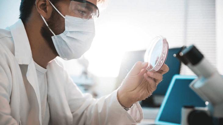 O Fungo Candida Auris Surgiu Pela Primeira Vez Na Ásia.