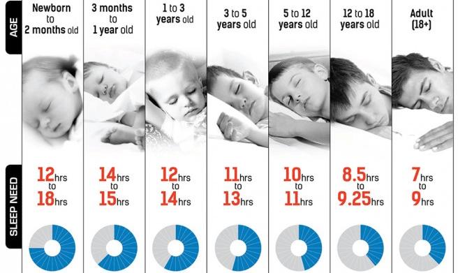 Quantas Horas Devemos Dormir