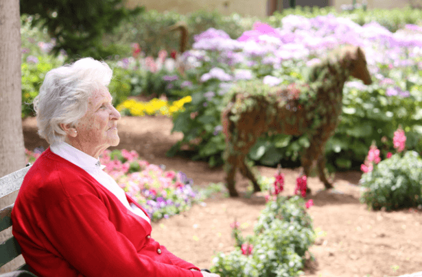 Terapia De Luz Para A Doença De Alzheimer