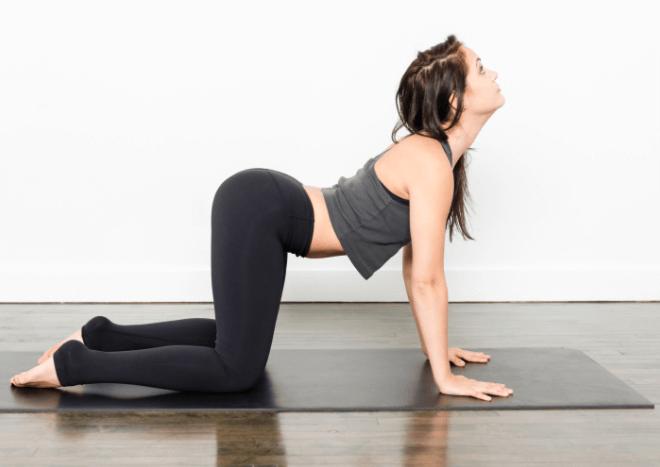 Fisioterapia Para Hernia De Disco