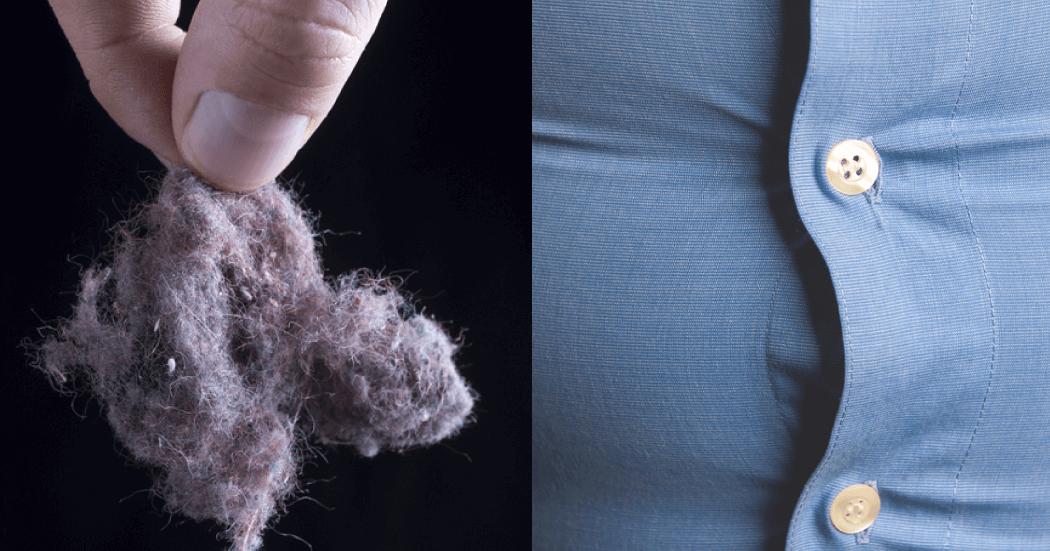 Até Mesmo Quantidades Minúsculas De Pó Pode Ter Um Efeito Mensurável Sobre As Células De Gordura