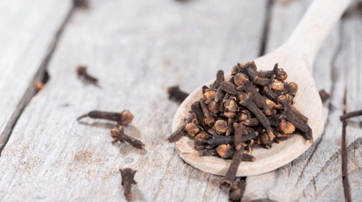 Cravo-da-Índia: Benefícios que Protegem Contra o Câncer