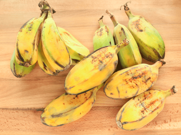 Banana Saba (Musa Acuminata × Balbisiana)