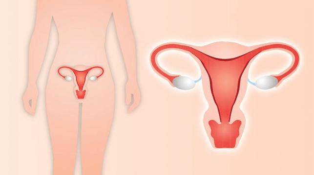 Como Fica a Mulher Após Retirar o Útero: 10 Coisas Que Seu Médico Não Te Contará Sobre Histerectomia
