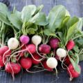 Benefícios Da Folha De Rabanete Para A Saúde