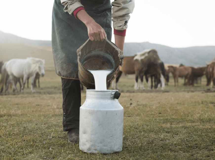 Leite De Cavalo (Leite De égua), Informação Nutricional E Benefícios