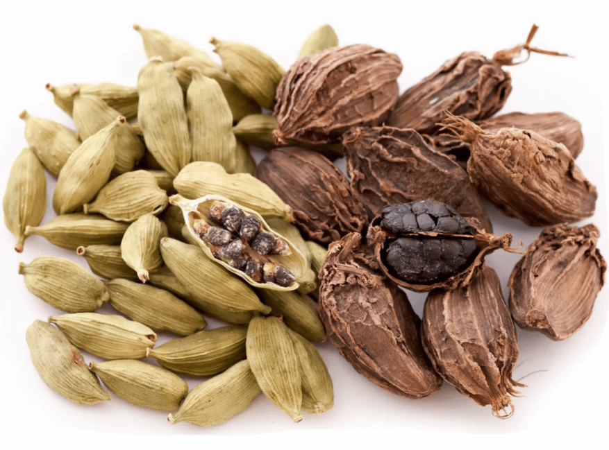 Óleo Essencial de Cardamomo (Elettaria cardamomum): 8 Benefícios e Usos