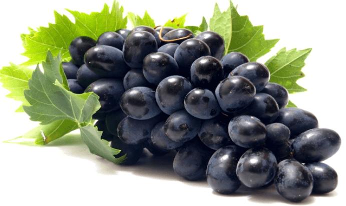 Suco de Uva para emagrecer