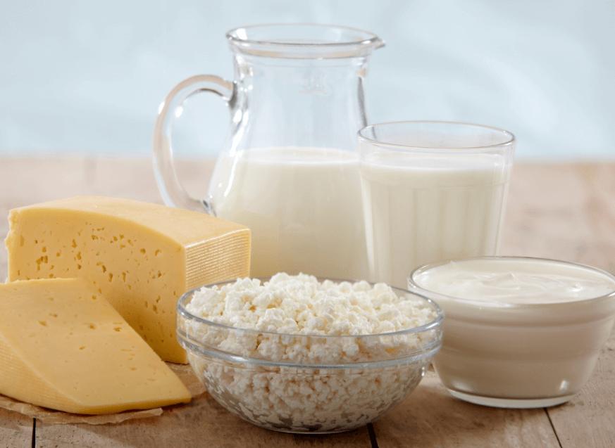 Dieta à Base De Produtos Lácteos