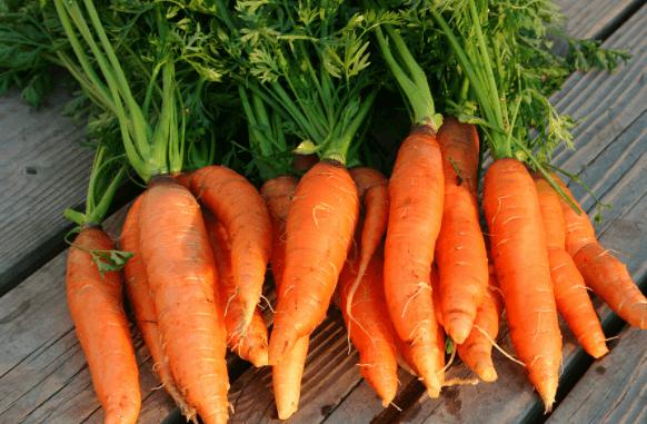 Suco de cenoura para prevenir doenças degenerativas