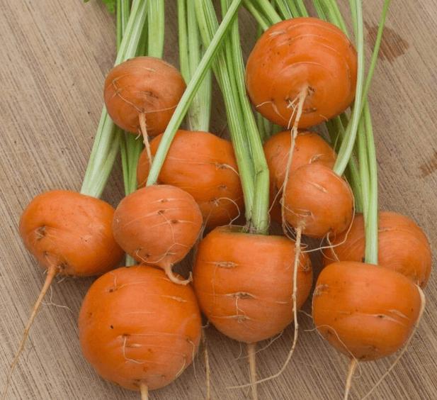 Suco antioxidante de cenoura e salsa