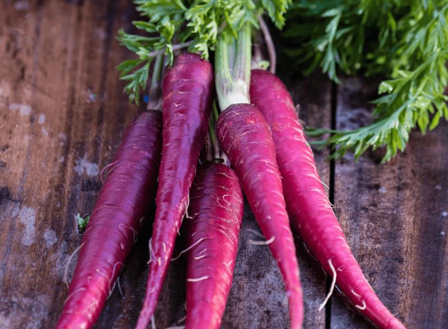 Cenoura Roxa: Composição Nutricional e Benefícios Para a Saúde