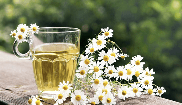 O Chá De Camomila é Um Maravilhoso Tratamento Caseiro Para Os Sintomas De Cisto De Ovário