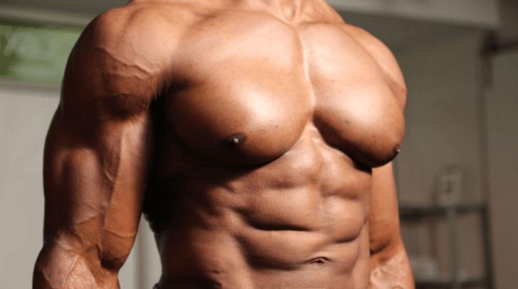 Mais Músculo Menos Gordura