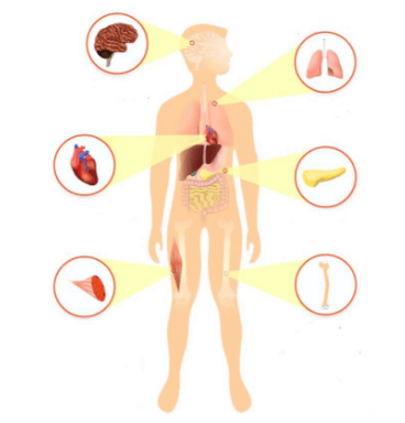 Sintomas De Deficiência De Vitamina D3