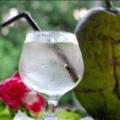 Água De Coco Ajuda A Emagrecer E Restabelecer Os Eletrolitos Perdidos No Suor Excessivo