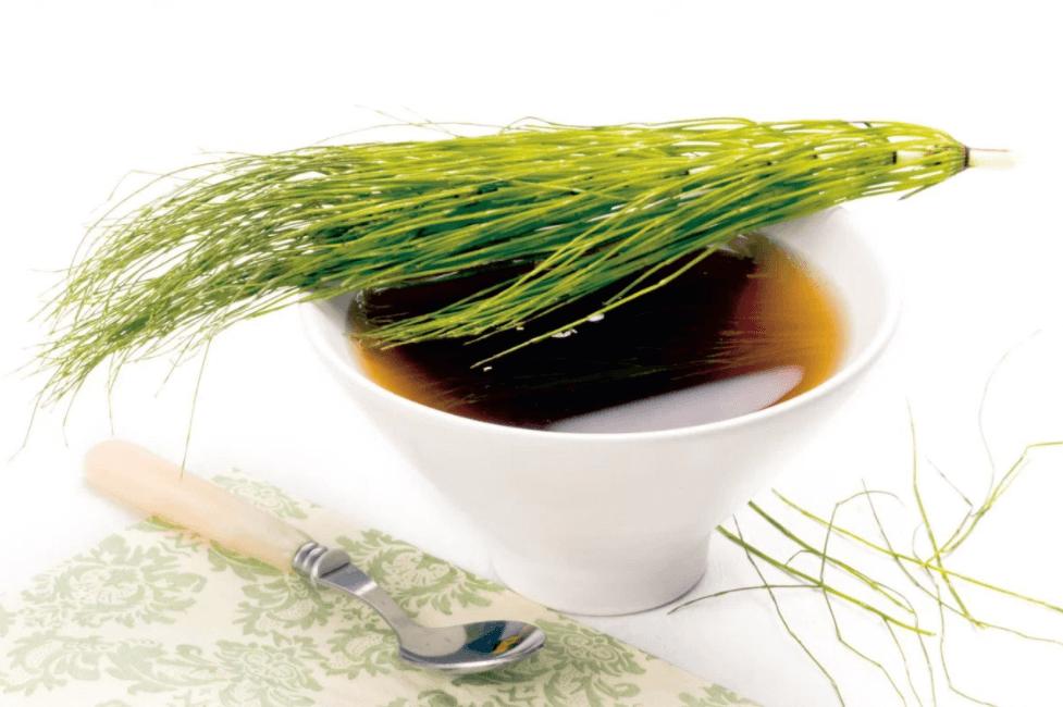 Aprenda A Fazer O Chá De Cavalinha Com Asfolhassecasda Planta Equisetum