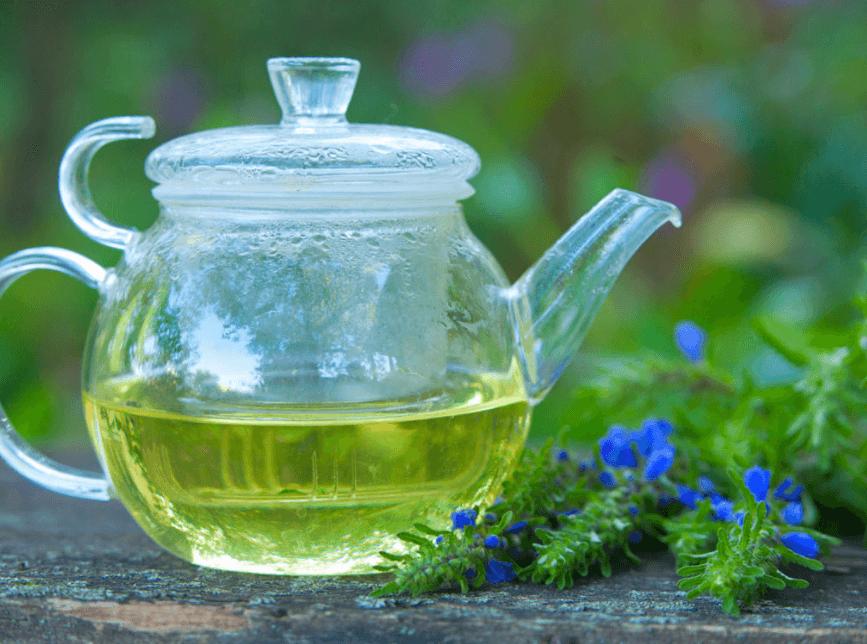Chá De Hissopo (Hyssopus officinalis): 8 Benefícios Essenciais em Qualquer Lar